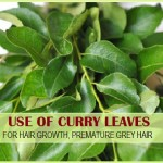 Use of Curry leaves (Kadi Patta) for Hair: Benefits of Kadi Patta for Hair