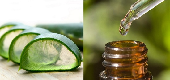 aloe vera gel for pimple and acne treatment tea tree oil