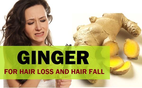 Ginger for hair loss, hair fall, hair Regrowth 3