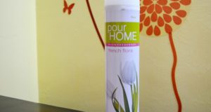 Vanesa Pour Home Room Air Freshner French Flora Review