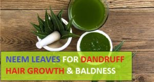 Neem Leaves and Powder for Dandruff and hair growth