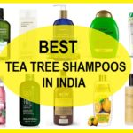 10 Best Tea Tree Shampoos in India with Prices