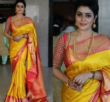 Elbow Length Pattu Saree Blouse Design