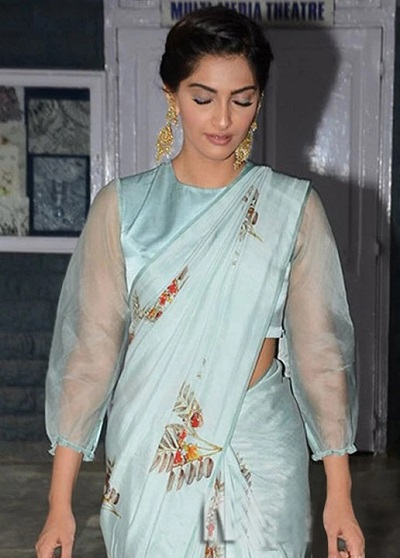 Long sleeves with cinched wrist saree Blouse