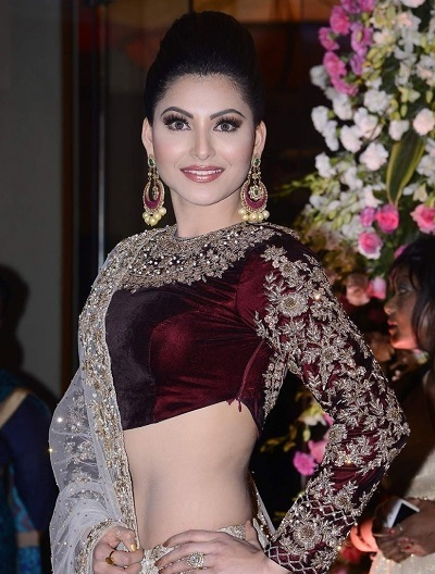 Velvet saree blouse design with embroidered sleeves