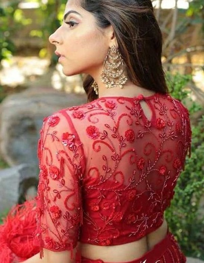 Red embroidered net saree and lehenga blouse design