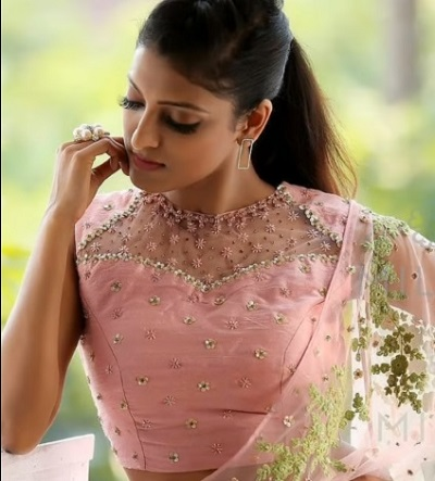 Party wear netted blouse design